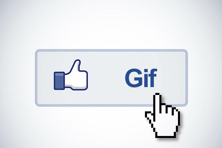 GIF Desteği Yorumlarda!