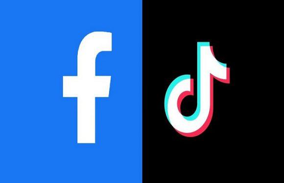 TikTok Facebook'a Karşı!